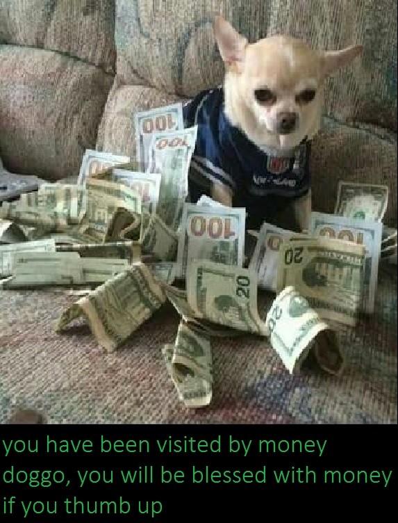 money. .. s t o p t o p money s t o p