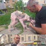 Dog Restoration