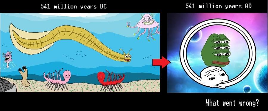 evolution. . million years BC J& lil million years w, Hhad went wrung? evolution million years BC J& lil w Hhad went wrung?